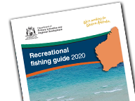 Recreational Fishing Guide​​